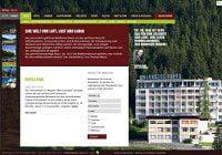 waldhotel-davos