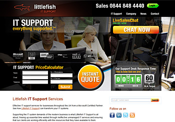 Littlefish IT Support