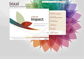 Bixal: Connecting you to hispanic markets