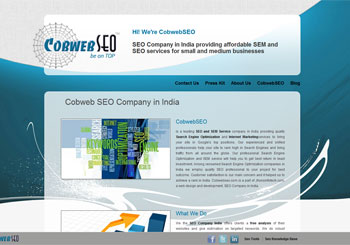 SEO Service Company In India